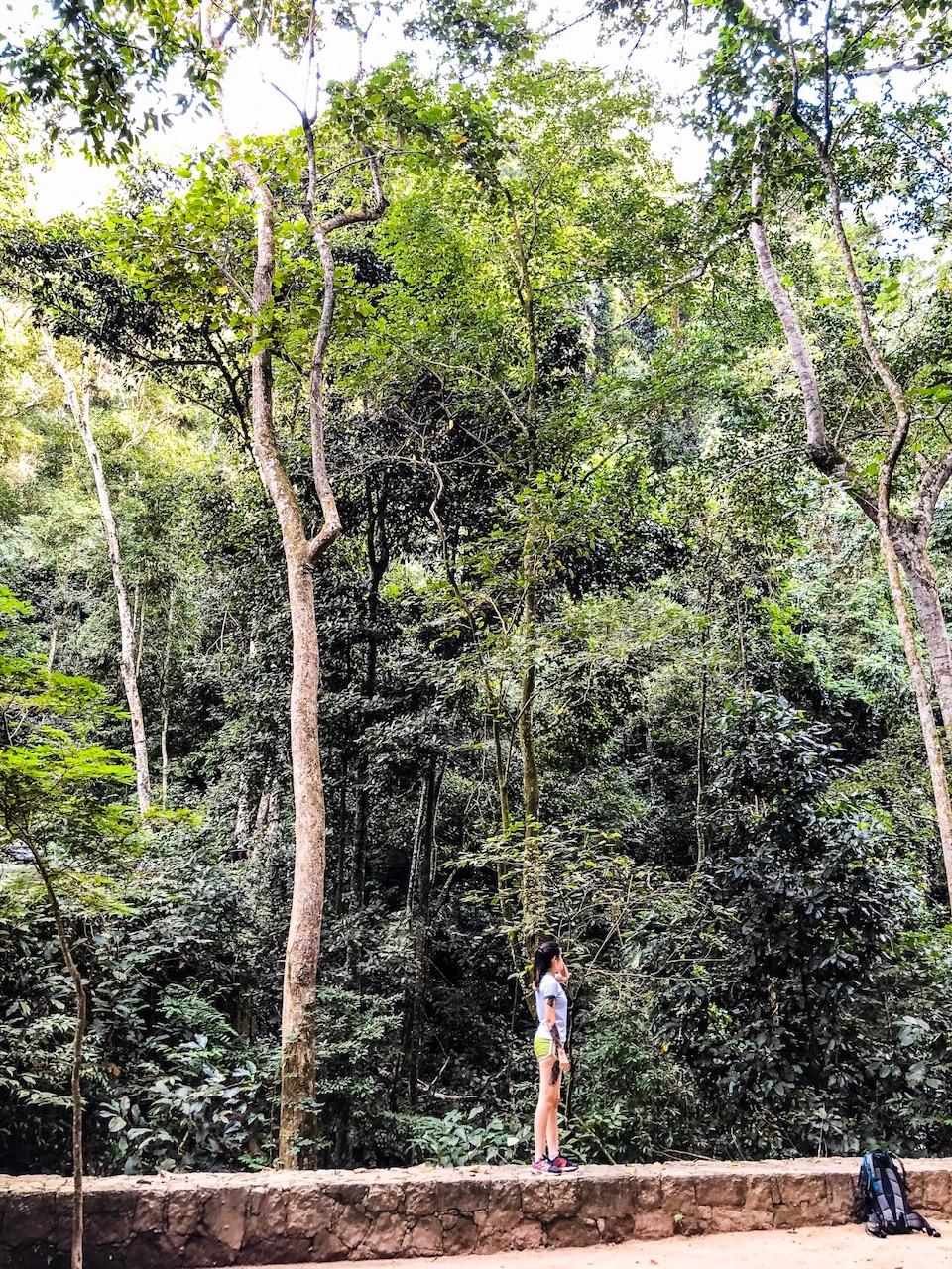 base trekking a la cachoeira do horto