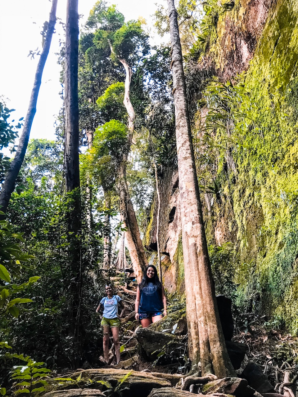 trekking a la cachoeira do horto