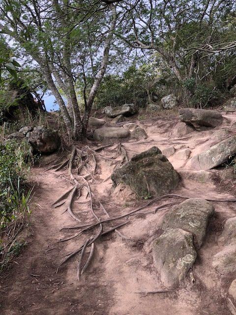 trekking pedra do telégrafo cómo llegar a la pedra do telégrafo itinerario rio pedra do telégrafo